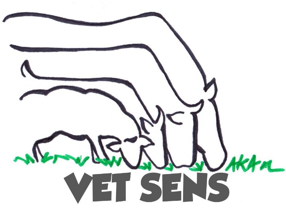 VetSens ou le bien-être naturel de l'animal